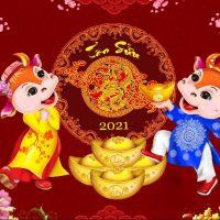 Mừng xuân Tân Sửu 2021 kính chúc quý khách hàng MAY MẮN – SỨC KHỎE – THÀNH ĐẠT thumbnail